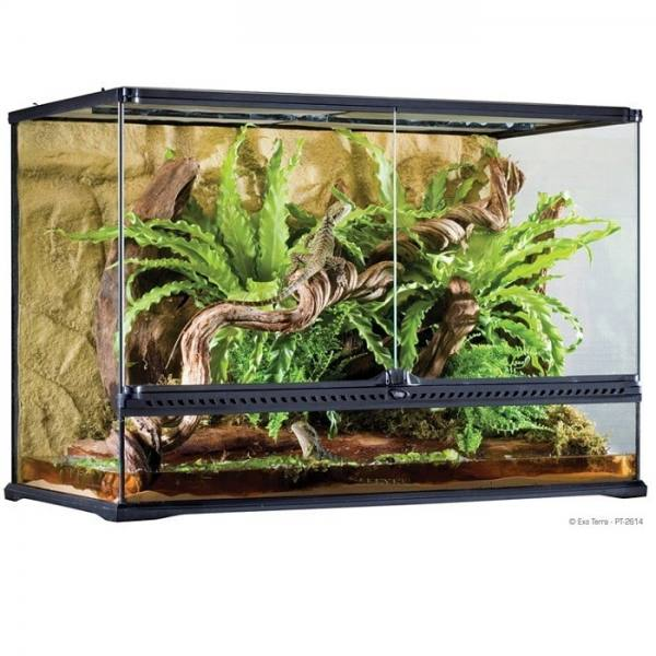 Terrarium en verre, grand, haut, 90 x 45 x 60 cm - Exo Terra