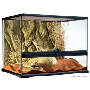Terrarium en verre, moyen, large - Exo Terra