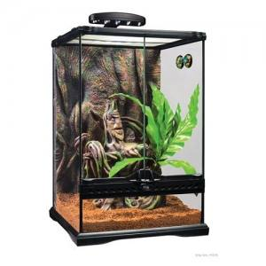 Petit terrarium équipé pour Gecko à crête - Exo Terra