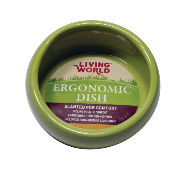 Bol Ergonomique, Vert - Living World