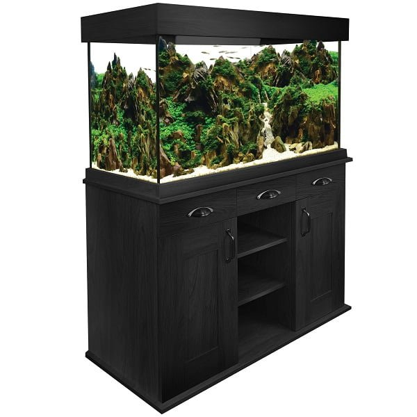 Aquarium équipé Shaker Fluval de 252 L (66 Gallons)